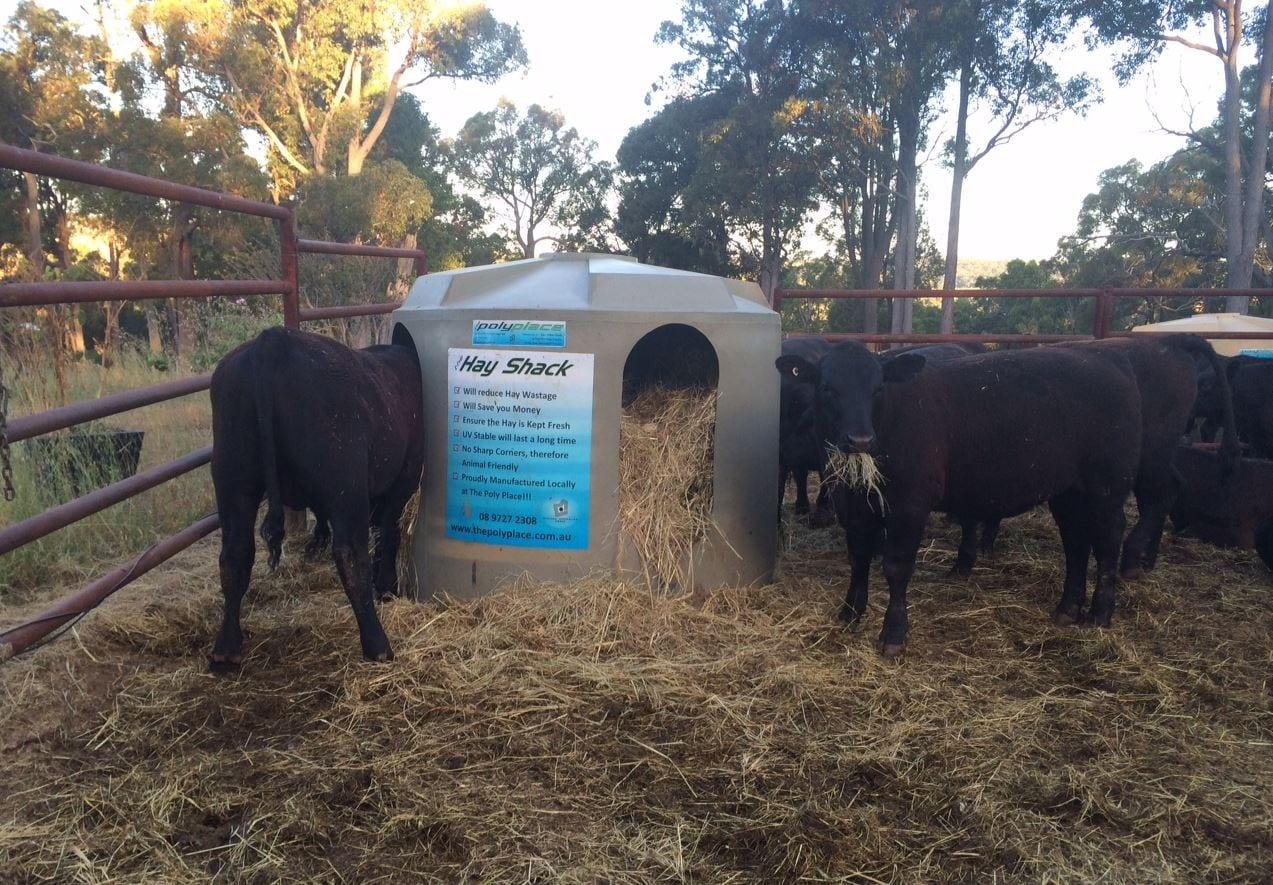 Cattle Hayshack