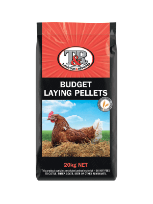 budget-laying-pellets