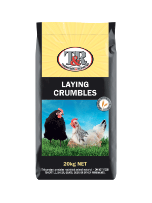 laying-crumbles (1)
