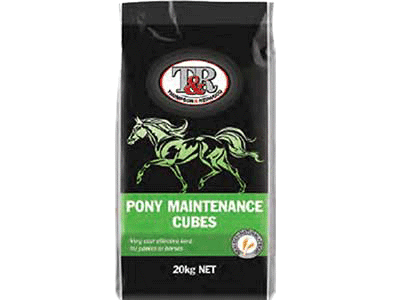 pony-maintainese-cubes